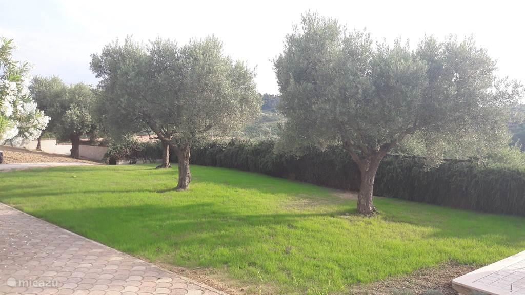 De prive tuin voor Appartement Colline (ook het beschutte terras voor het appartement is prive terras)