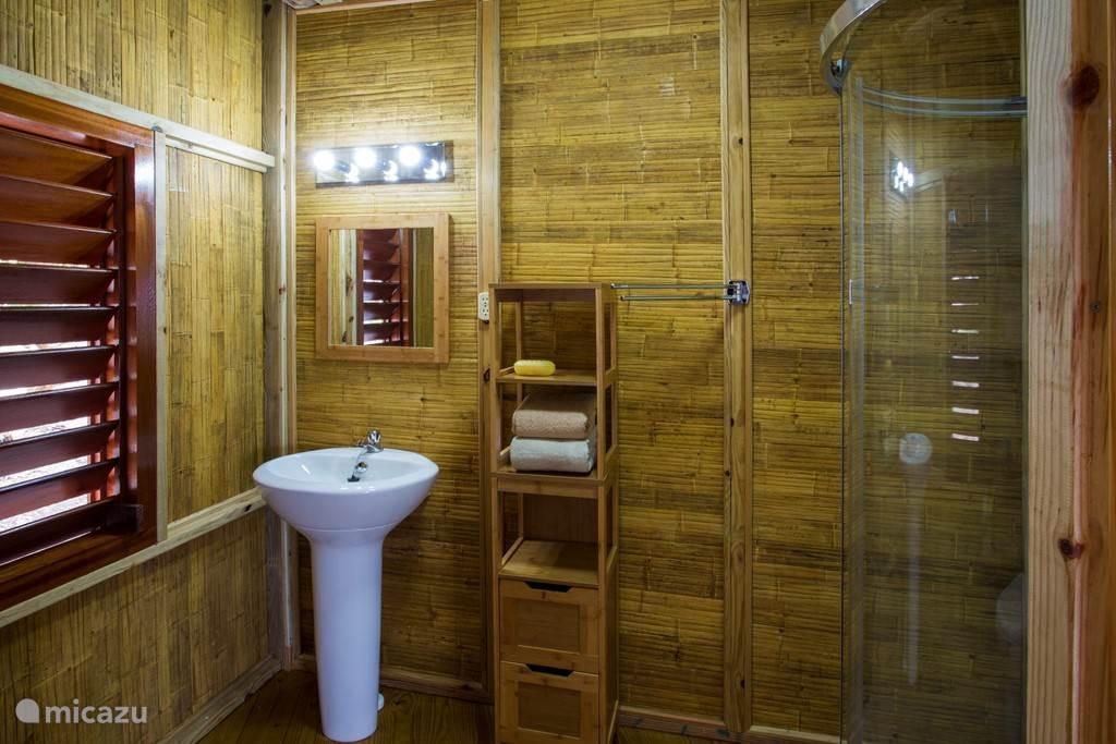 Prive badkamer met douche, wastafel en toilet.
