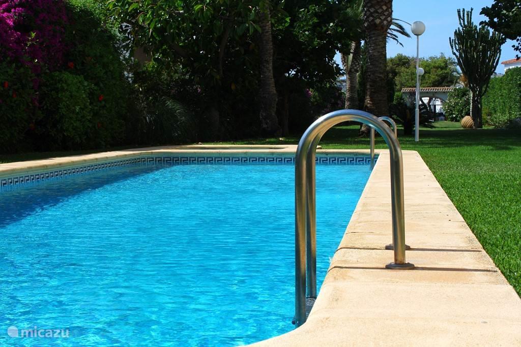 Zwembad en tuin met ligweide