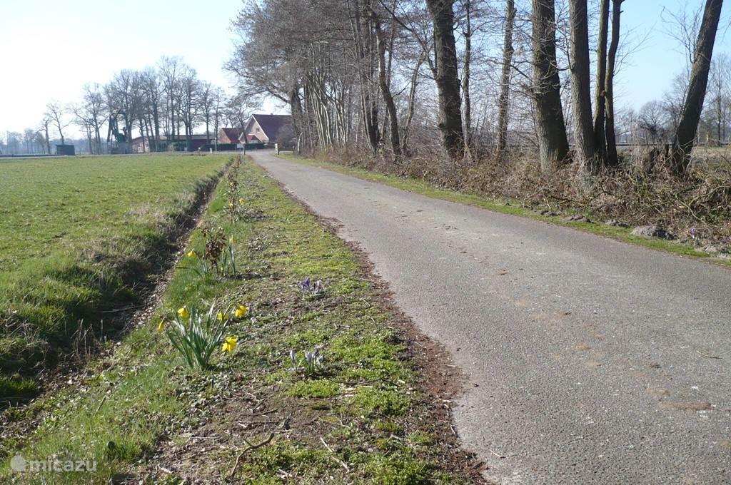 125 meter verwijderd van de openbare weg