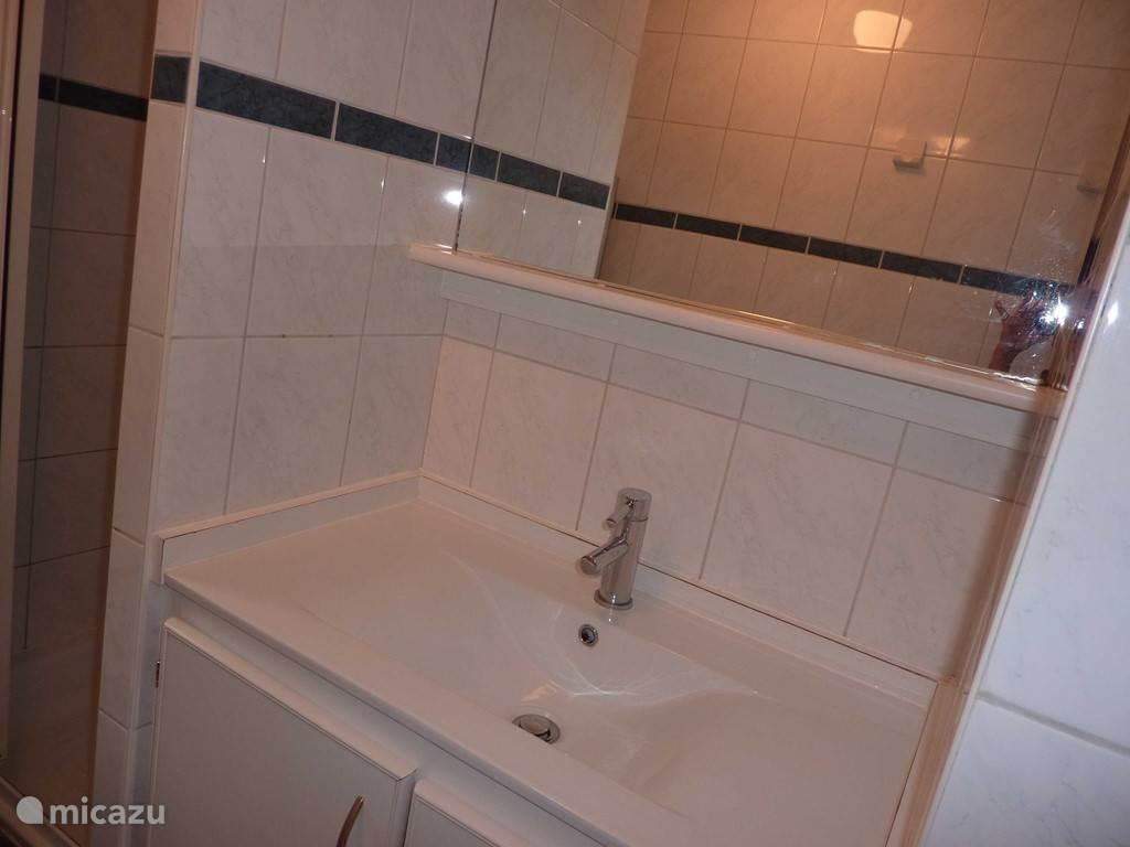 Wastafel, douche en toilet in 1 ruimte