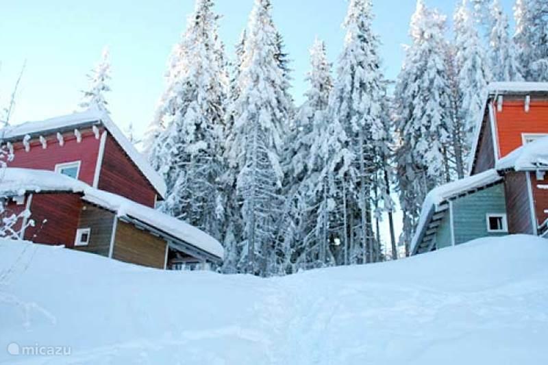 Vacation rental Austria, Carinthia, Preitenegg Holiday house Holiday home Hebalm 2