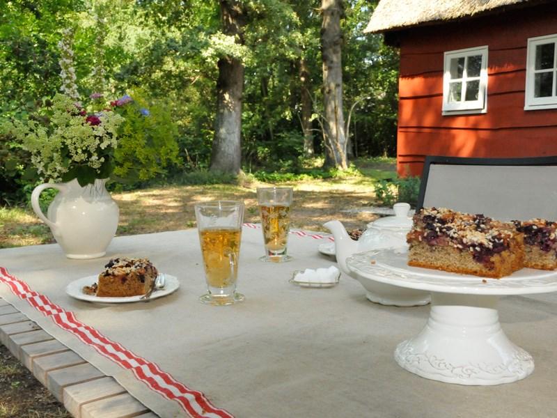 Vroegboekkorting Genieten op het platteland van Drenthe! Boek nu een week in de zomervakantie en ontvang 10% op de overnachtingsprijs.