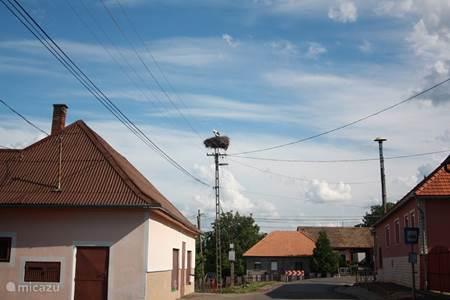 In bijna alle dorpjes ooievaarsnesten