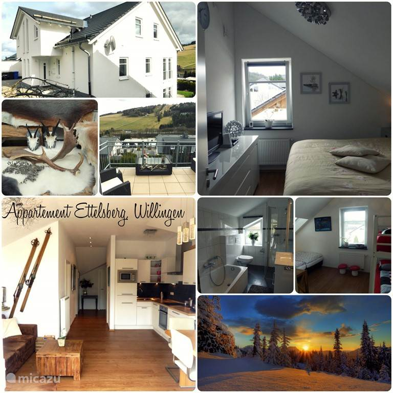 Vakantiehuis Duitsland, Sauerland, Willingen Appartement Huur een Huis in Sauerland