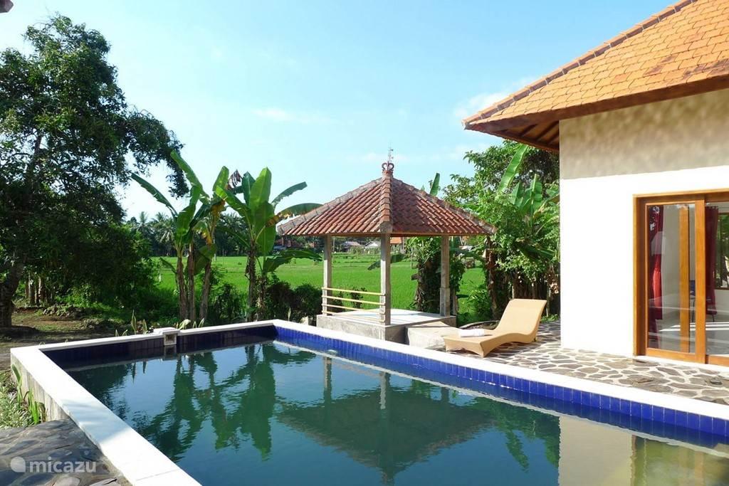 Zwembad met uitzicht over de rijstvelden