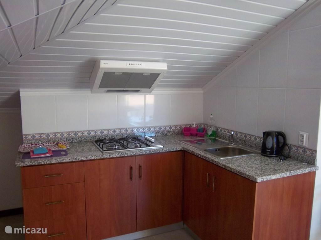 Het appartement is niet al te groot maar heeft een keuken ...badkamer een slaapkamer en een kleine living