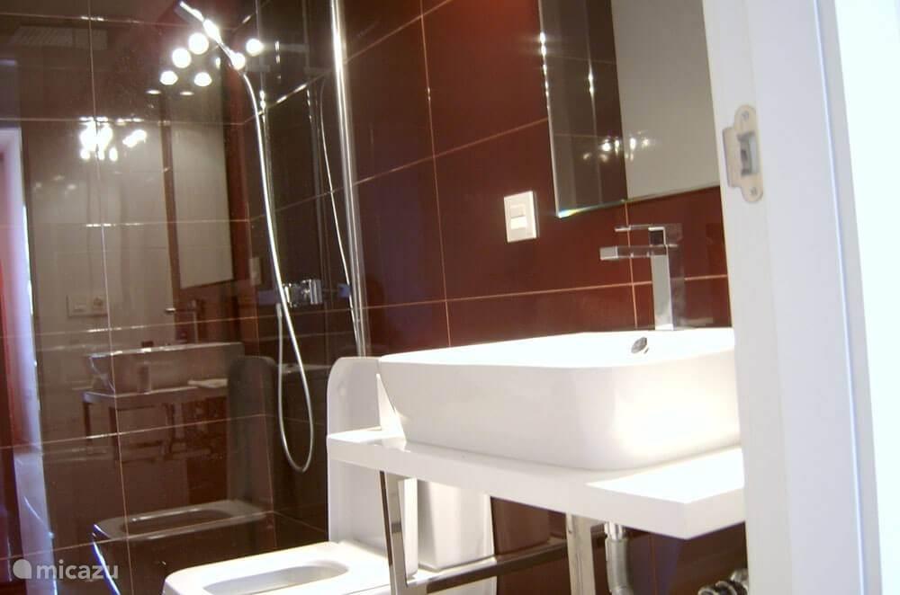 2 van 2 moderne badkamers