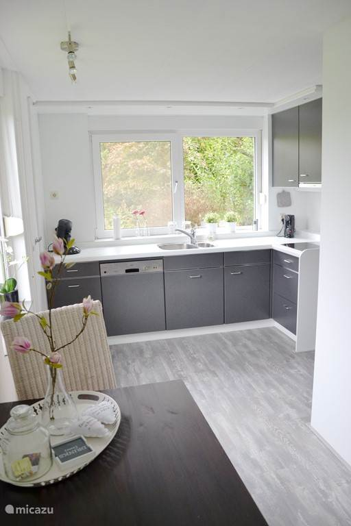 Keuken. Met vaatwasser, magnetron, oven en inductiekookplaat.