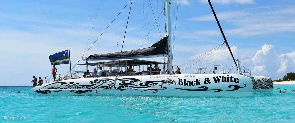 Klein Curacao trip