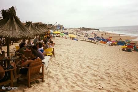 Casa das Flores en aanvullende reisgegevens
