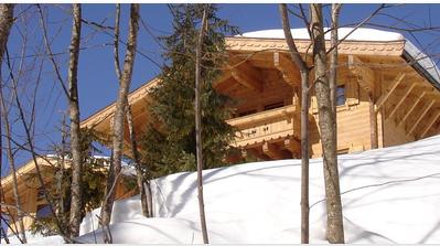 Vacation rental Austria, Salzburgerland, Hinterthal chalet Woodgate