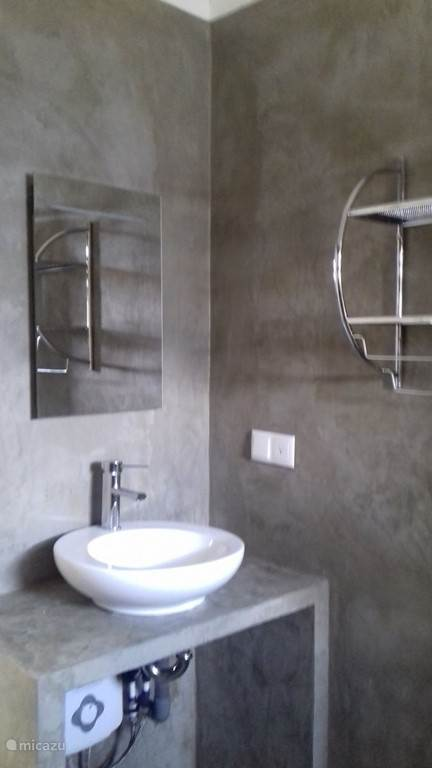 Modern bathroom with large shower