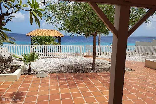 Vacation rental Bonaire, Bonaire, Kralendijk - bed & breakfast Tropical Oceanfront 1