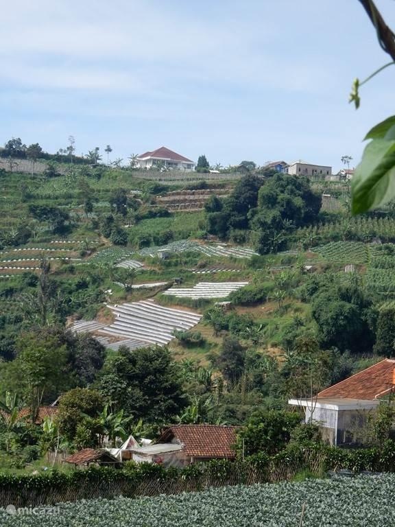 Villa Venetys Lembang