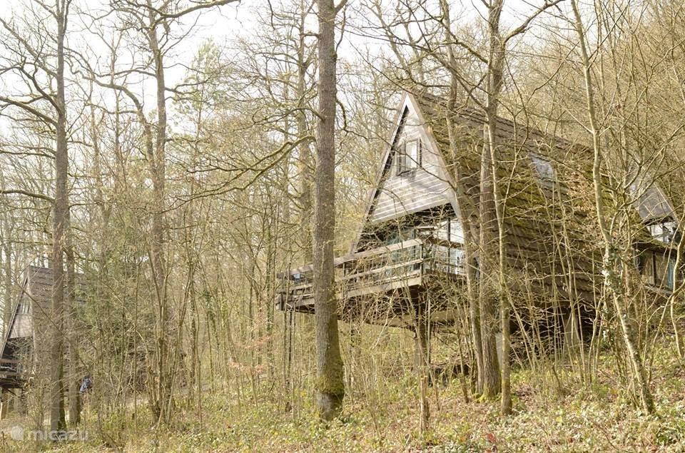 Vakantiehuis België, Ardennen, Durbuy - bungalow 't Boshûske(192)Kind/Hond vriendelyk