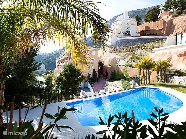 Het uitzicht vanuit het zwembad en de tuin op de zijkant van het appartement.