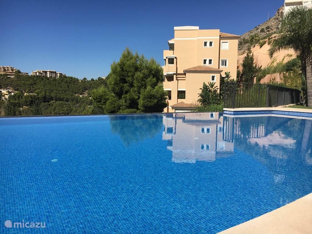 Het zwembad met uitzicht op het moderne appartement.