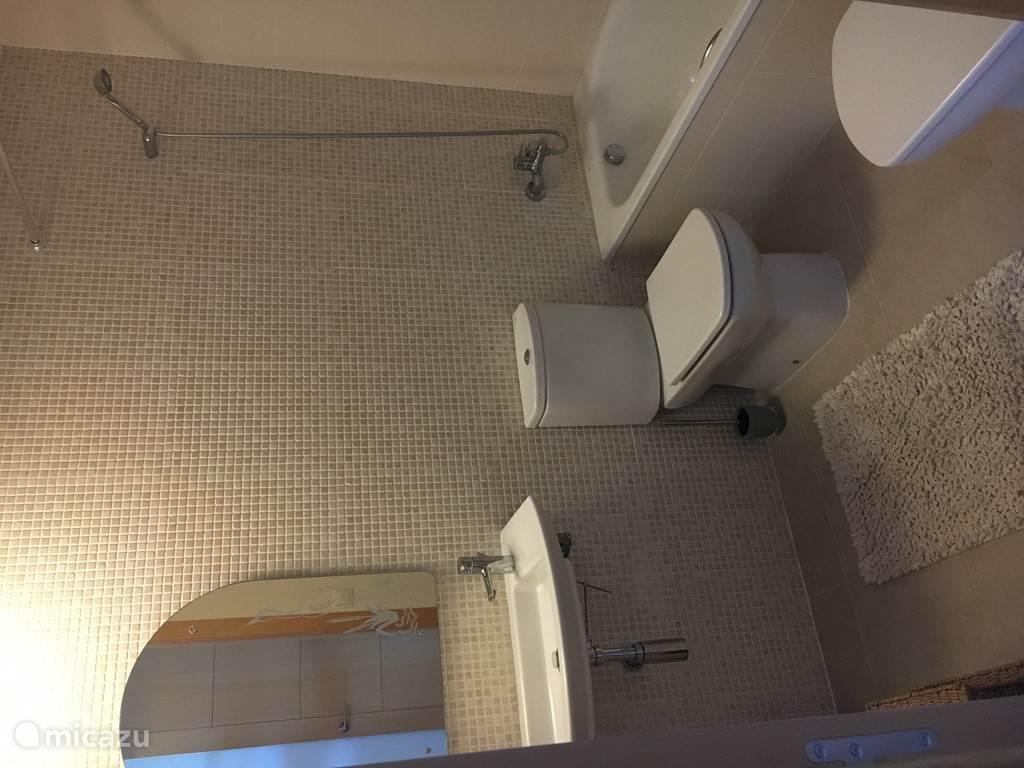 Badkamer 1 van 2 met ligbad.