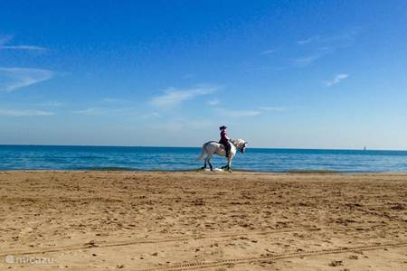 Stranden bij Valencia