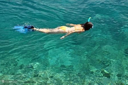 Snorkelen en duiken
