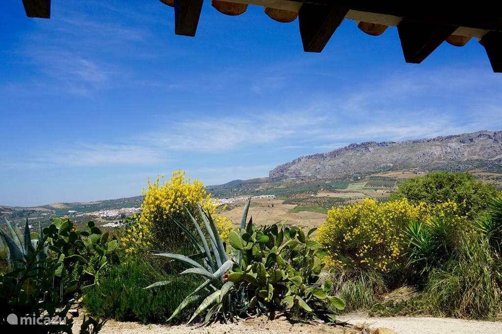Vakantiehuis Spanje, Andalusië, Villanueva de la Concepción gîte / cottage Prachtige cottage op Spaanse cortijo