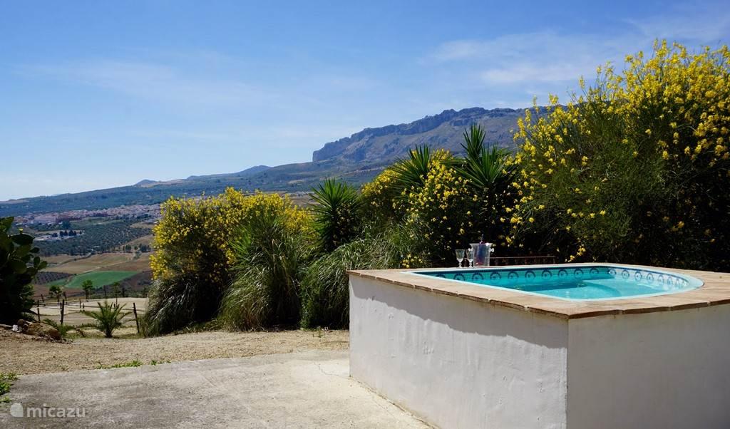 Uitzicht vanuit de jacuzzi sized pool