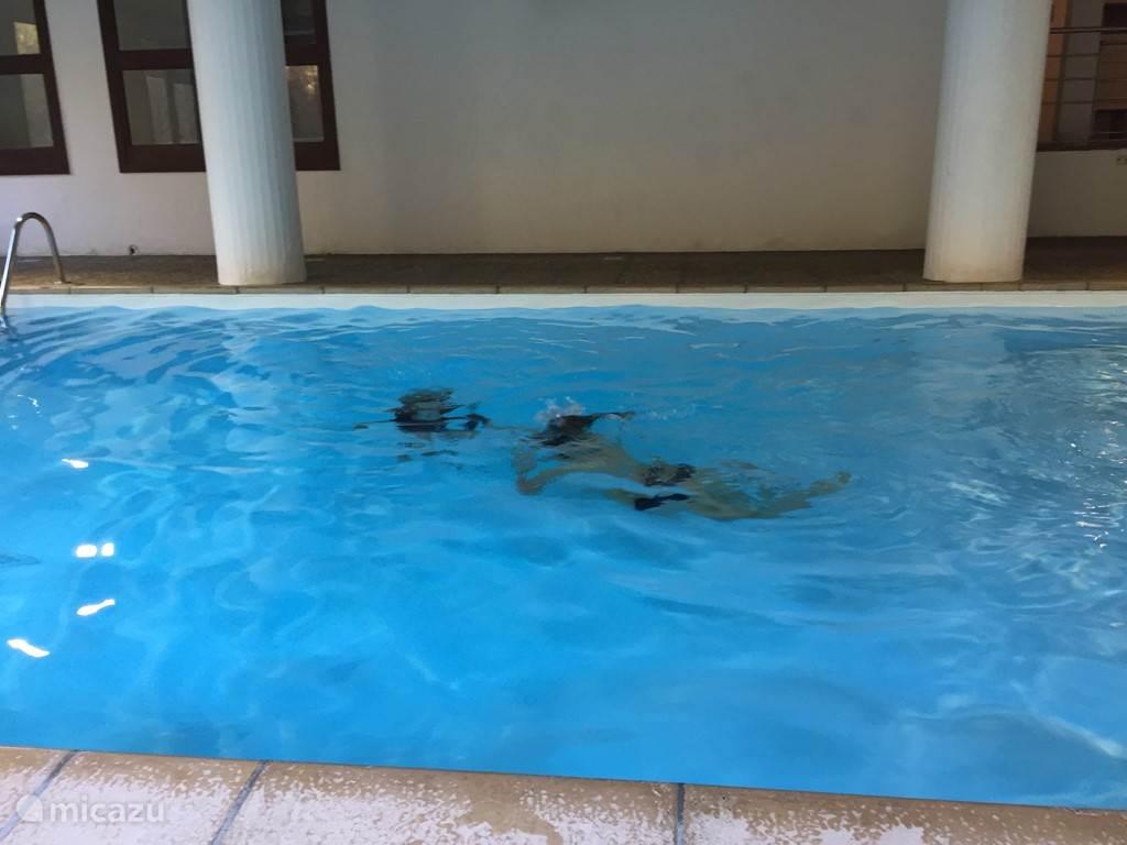 Een gezamelijk overdekt zwembad in het gebouw. Er is ook een tennis tafel aanwezig in het gebouw
