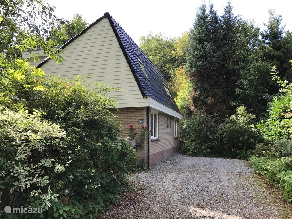 Vakantiehuis Nederland, Friesland, Appelscha villa Hulsthof 58, Modern huis met privacy
