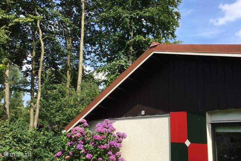 Vacation rental Netherlands, Drenthe, Exloo Bungalow #Blyde