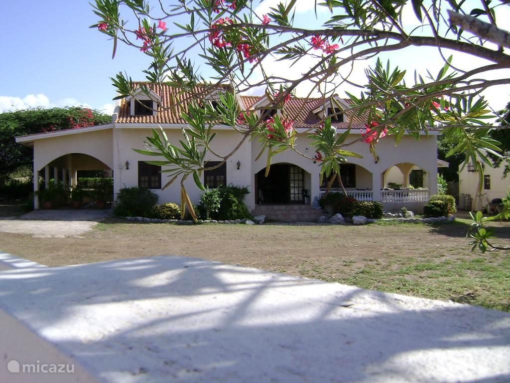 Vacation rental Curaçao, Curacao-Middle, Abrahamsz Studio Studio Bougainville