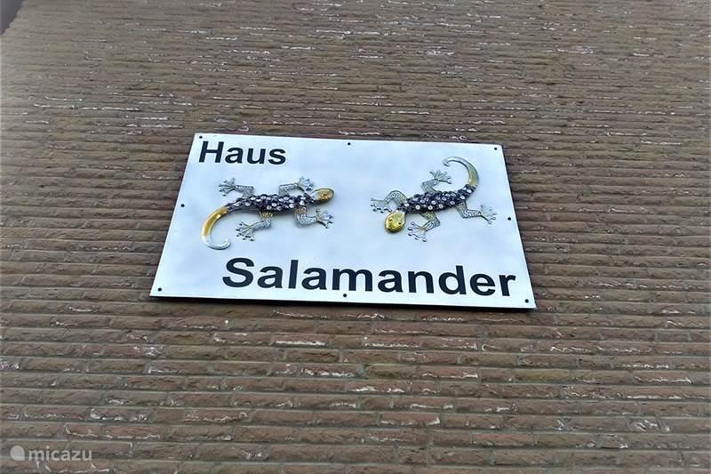 Ferienwohnung Deutschland, Eifel, Lissendorf Appartement Haus Salamander