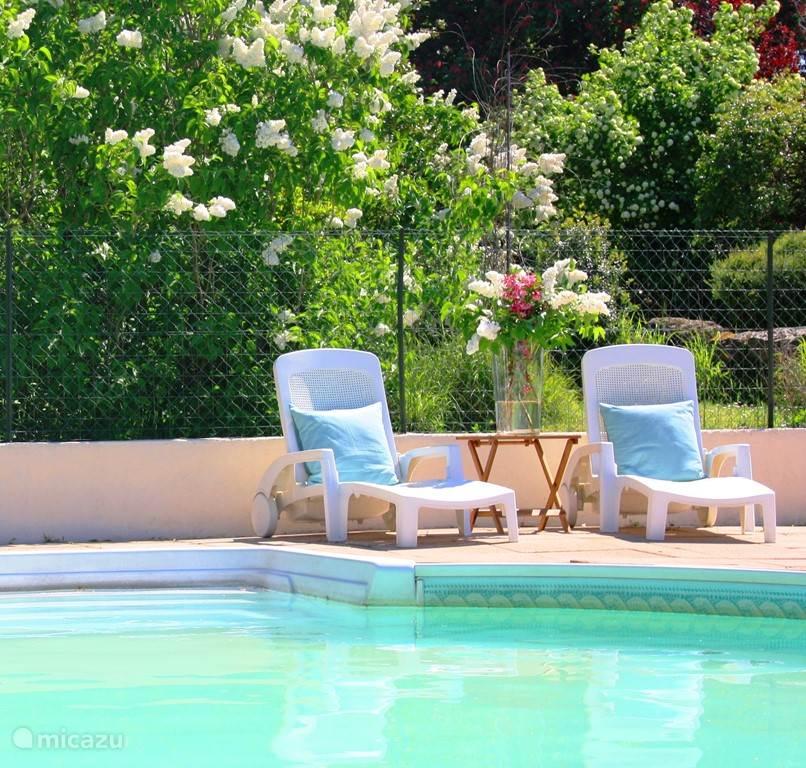 Het heerlijk verfrissende zwembad, dagelijks geopend van 10:30 - 19:30 uur