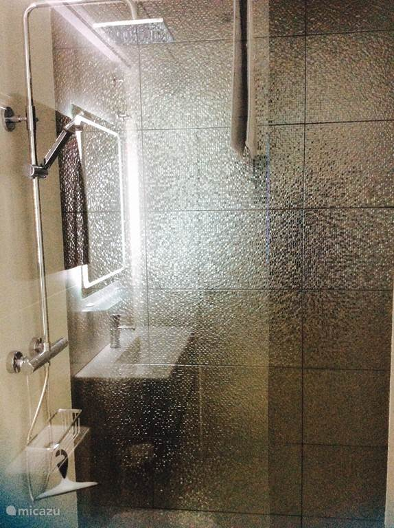 2 badkamers voorzien van inloopdouche en 2 toiletten