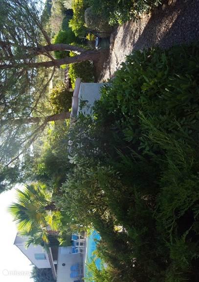 Bellevue II vanuit de tuin gezien