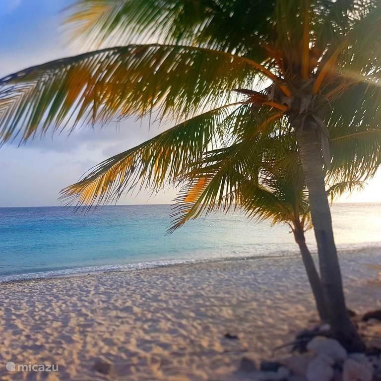 Vakantiehuis Curaçao, Curacao-Midden, Mahuma Bed & Breakfast Cas Bon Bini