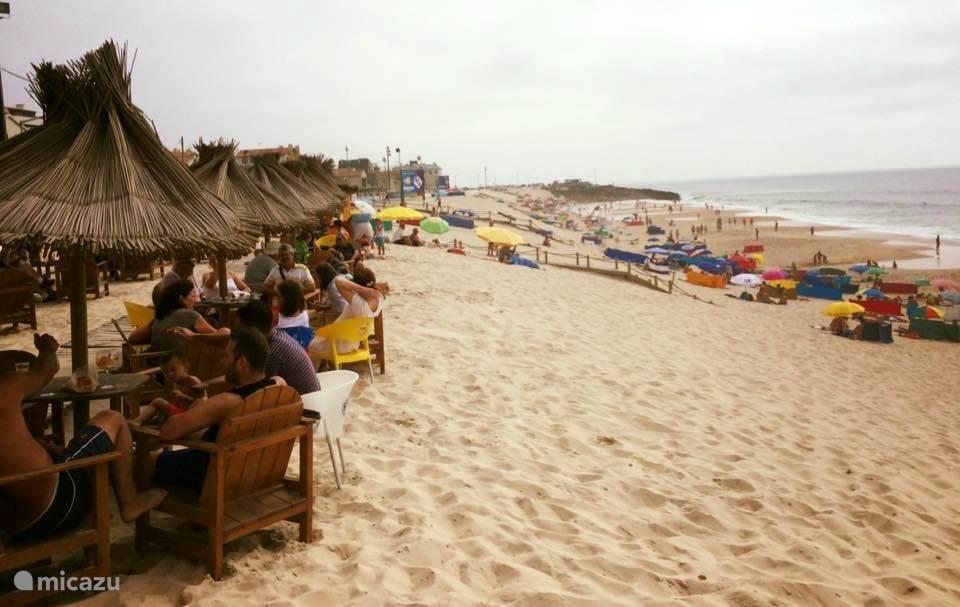 Casa das Flores en aanvullende reisinformatie