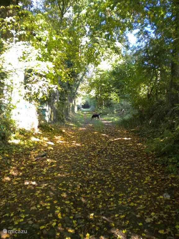 Wandeling in Deux-Rys naar Laid-L'oiseau