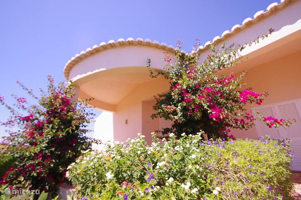 Het huis met bouganvillea