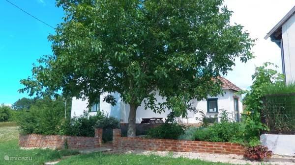 Vacation rental Hungary, Somogy – holiday house House Weltevree
