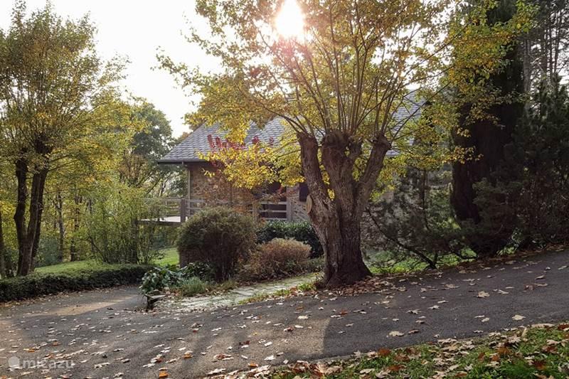 Vakantiehuis België, Ardennen, Vencimont Chalet Chalet Tartan