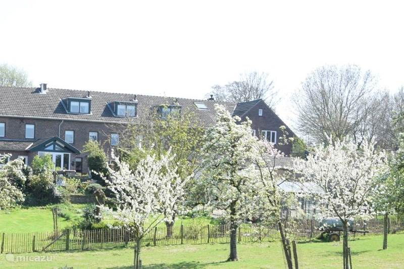 Vakantiehuis Nederland, Limburg, Mechelen Vakantiehuis Hoeve Schevey 2