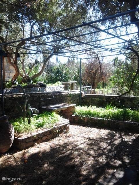 Achterterras en tuin met barbecue