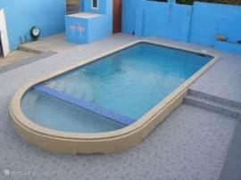 Het privé-zwembad