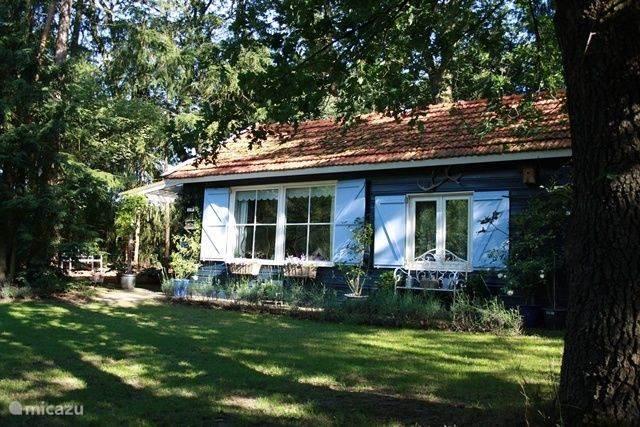 Nieuw Vakantiehuis Nederland, Overijssel, Beerze – vakantiehuis Het Pimpelmeesje