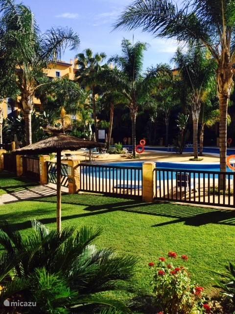 Groot zwembad in Tropische tuin