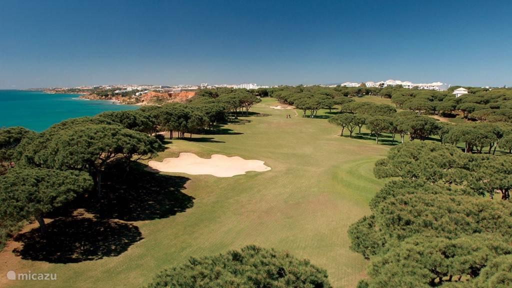 Pine Cliffs Golf baan
