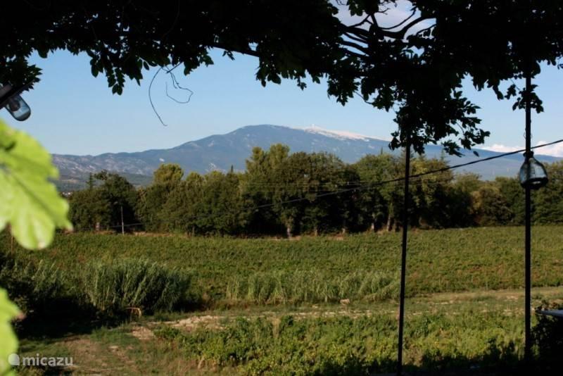 Het uitzicht op de Mont Ventoux