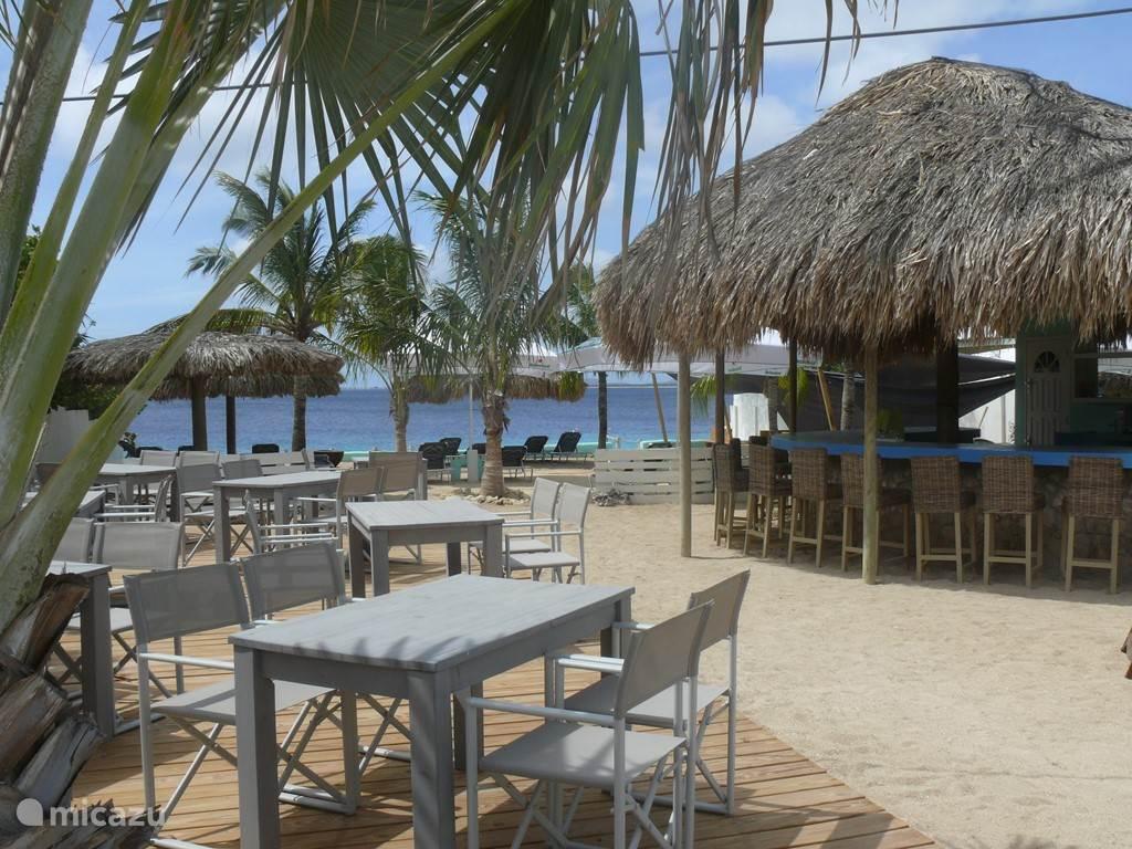 Windsock beach bar