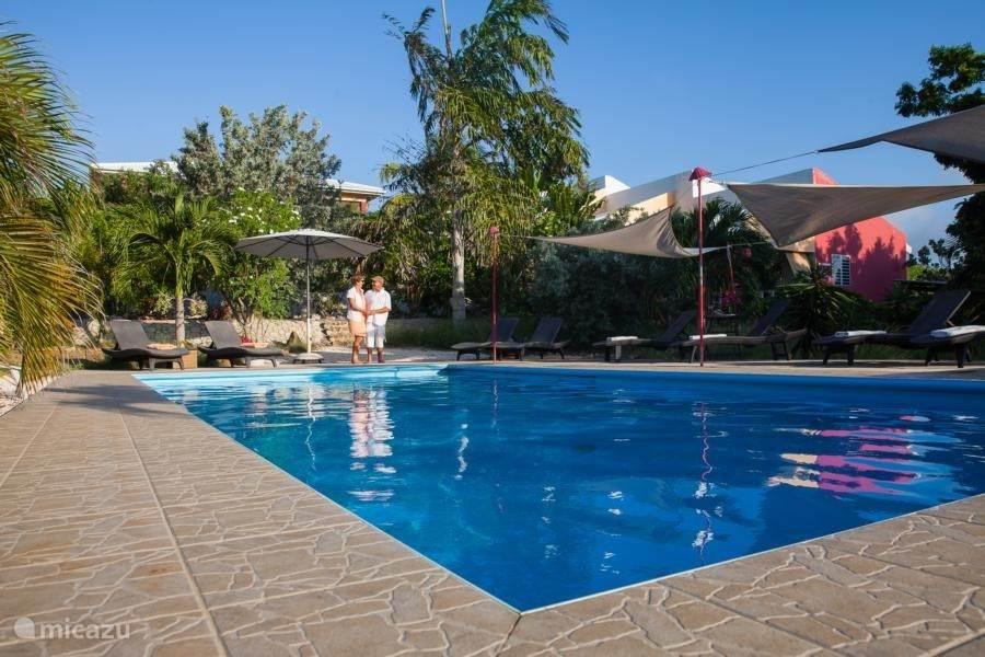Big pool 5x10 m